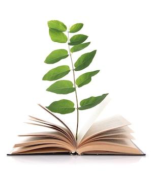 Książka z roślin na białym tle