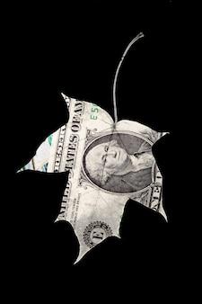 Kształt liścia dolara amerykańskiego na białym tle na czarnym tle