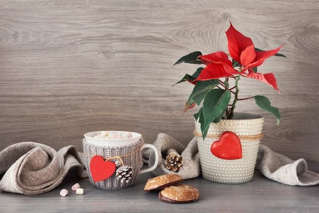Kubek gorącej czekolady z piankami, słodyczami świątecznymi, poinsecją i dekoracjami świątecznymi