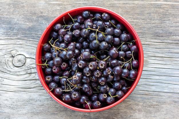 Kubek z czarnymi jagodami głogu na szaro