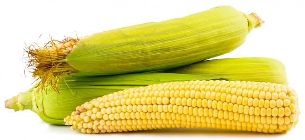 Kukurydza na białym tle na białym tle ścieżki przycinającej