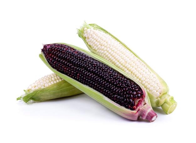 Kukurydza na białym