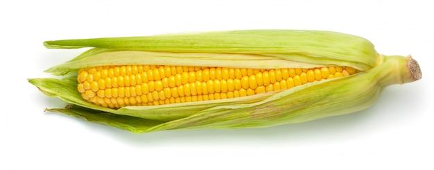 Kukurydza w liściach na białym tle.