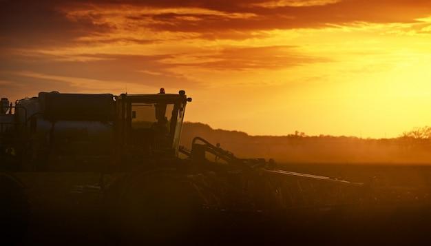 Kultywowanie w zachodzie słońca