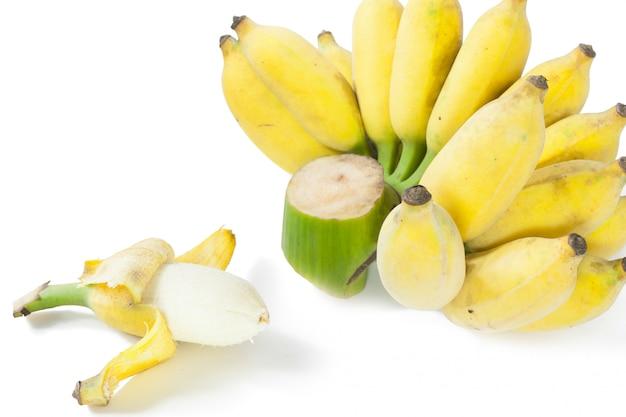 Kultywowany banan.