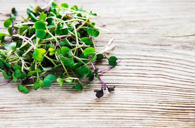 Kupa rzodkiewki mikro zieleniny na starym drewnianym stole, widok z góry.