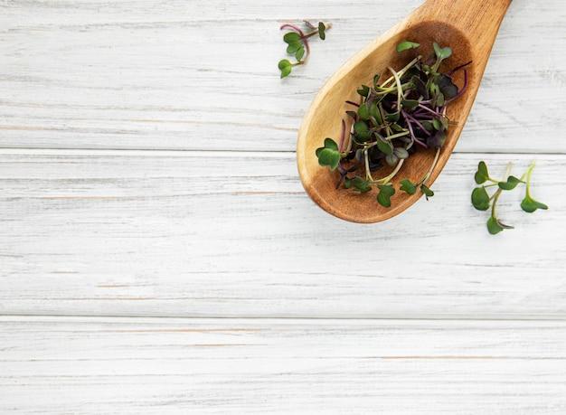 Kupa rzodkiewki mikro zieleniny