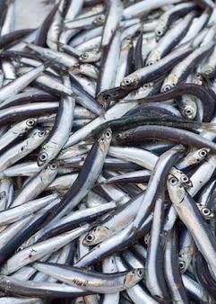 Kupa sardeli na sprzedaż na lokalnym targu rybnym