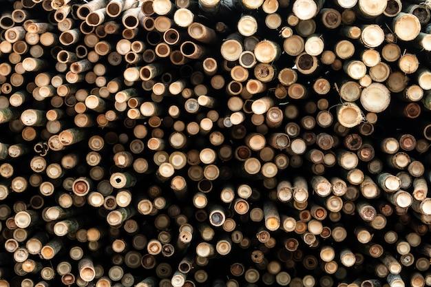 Kupie bambusowy słup. stos okrąglaków. duża partia kłód drewnianych na skalę przemysłową lub do produkcji.