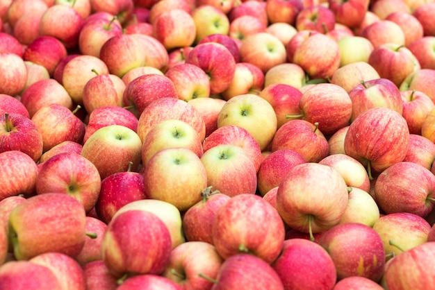 Kupie czerwonych świeżych jabłek