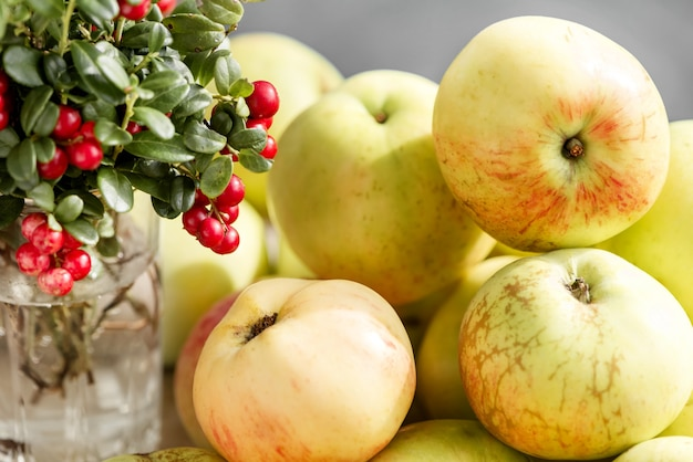 Kupie dojrzałe jabłka i kilka gałązek dzikich borówek brusznicowych z czerwonymi jagodami
