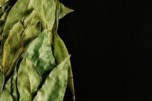 Kupie liście laurowe