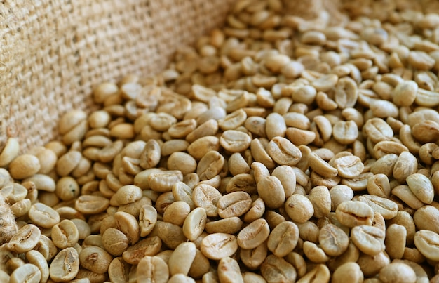 Kupie nieprażonych ziaren kawy w płótnie torby