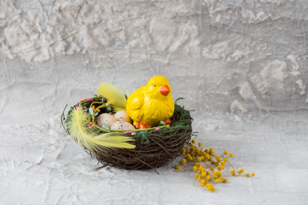 Kurczak siedzi w gnieździe z jajami, piórami i mimozy - kartka wielkanocna
