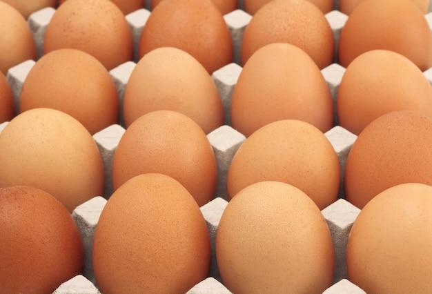 Kurczaków jajek rzędu wzoru tło