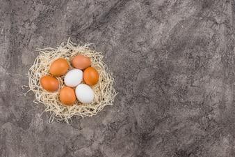 Kurczaków jajka w gniazdeczku na popielatym stole
