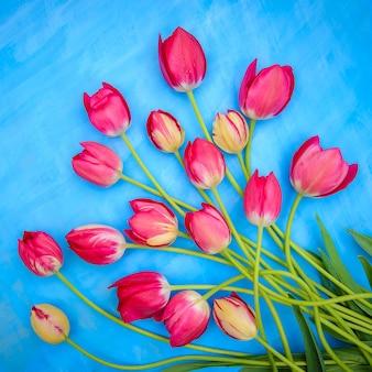 Kwadratowa kartka wiosenna z jasnoczerwonymi tulipanami na niebieskiej powierzchni