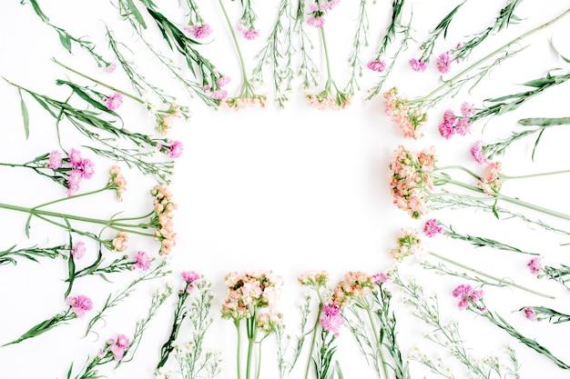 Kwadratowa ramka wykonana z polnych kwiatów