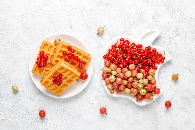 Kwadratowe gofry belgijskie z loquat owocami i miodem.