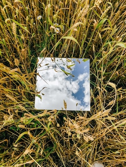 Kwadratowe lustro w pszenicznych uszach z odbitym niebieskim niebem i białymi chmurami