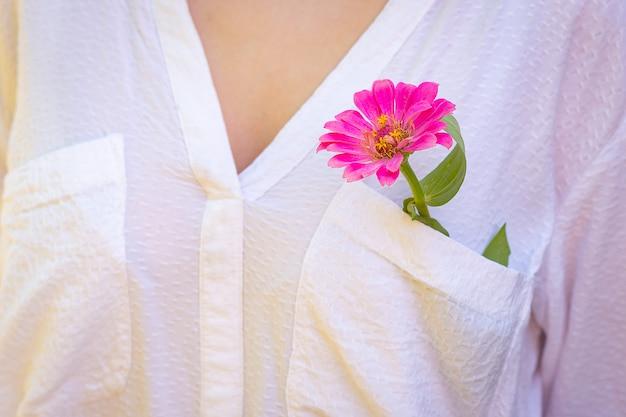 Kwiat cyni w kolorze fuksji w kieszeni białej bluzki na dziewczęcej piersi.