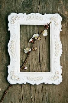 Kwiat gałąź wiśni w ramce
