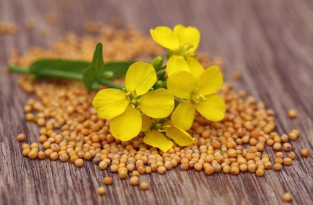 Kwiat gorczycy z nasionami na drewnianej powierzchni
