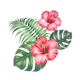 Kwiat hibiskusa czerwony.