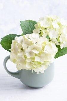 Kwiat hortensja kwiaty w wazonie
