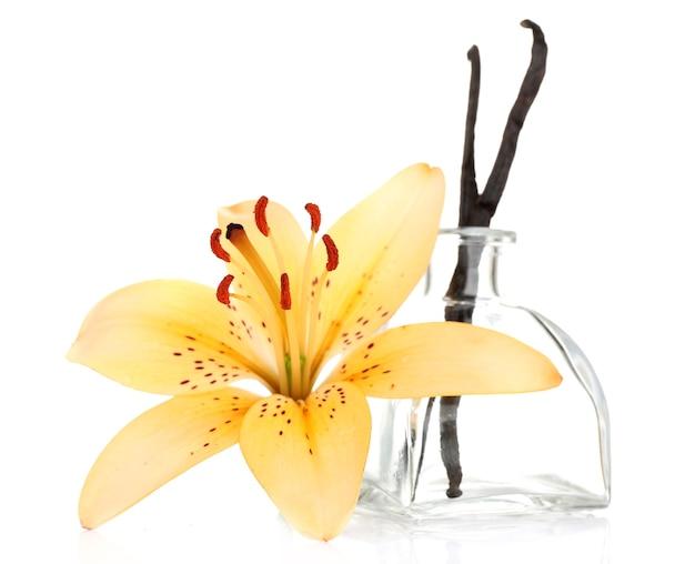 Kwiat lilii i laski wanilii na białym tle