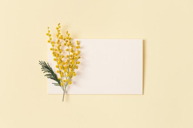 Kwiat mimozy z żółtym kwiatem i papierową kartką do tekstu naturalna gałąź kwiatu