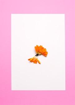 Kwiat na środku białego prześcieradła na różowym tle