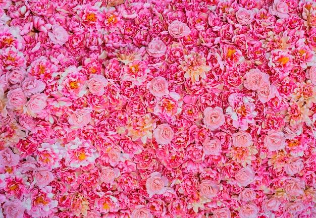 Kwiat na tle.