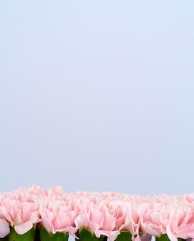 Kwiat ramki wykonany z różowych goździków