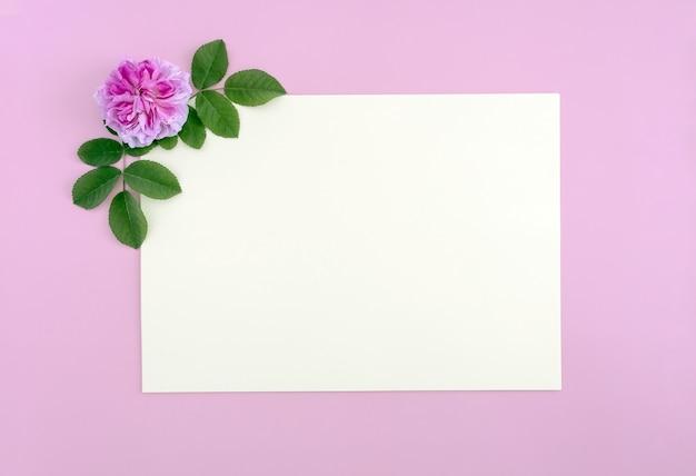 Kwiat róży i kartka papieru płaski widok z góry