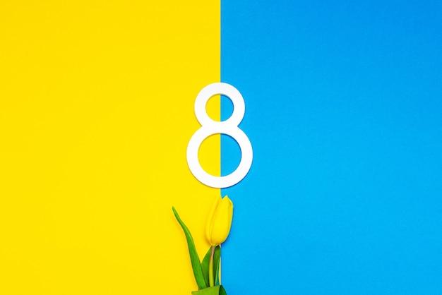 Kwiat tulipana na międzynarodowy dzień kobiet 8 marca