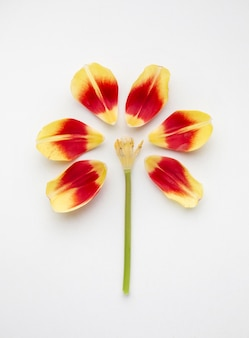 Kwiat wykonany z płatków kwiatów