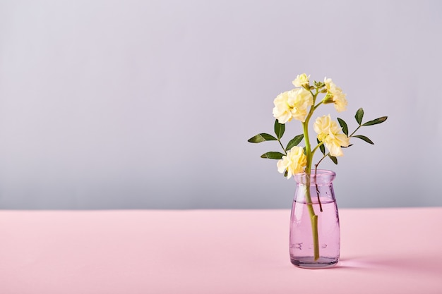 Kwiat żółtej matthioli w małym szklanym wazonie na różowym stole