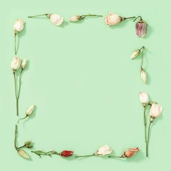 Kwiatowa dekoracyjna ramka z suchych kwiatów i płatków wzór na delikatnej zieleni. naturalne kwieciste tło, koncepcja przyrody lub środowiska. widok z góry, płaski układ.