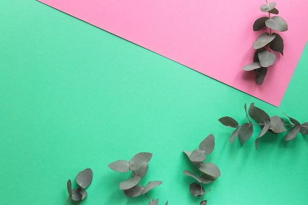 Kwiatowa modna geometryczna tekstura liście eukaliptusa na akwamarynie