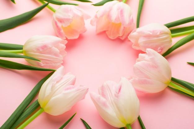 Kwiatowa ramka z tulipanami na różowym pastelowym