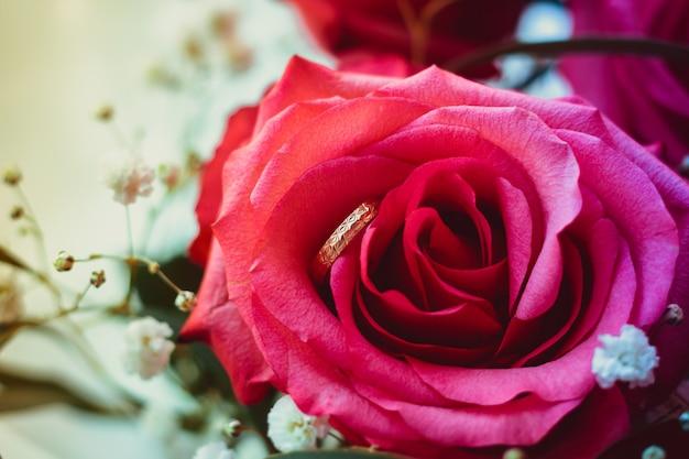 Kwiatowa róża różowa. płatki kwitnie pięknego kwiatu.