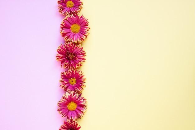 Kwiatowe piękne tło w różowych i jasnożółtych kolorach
