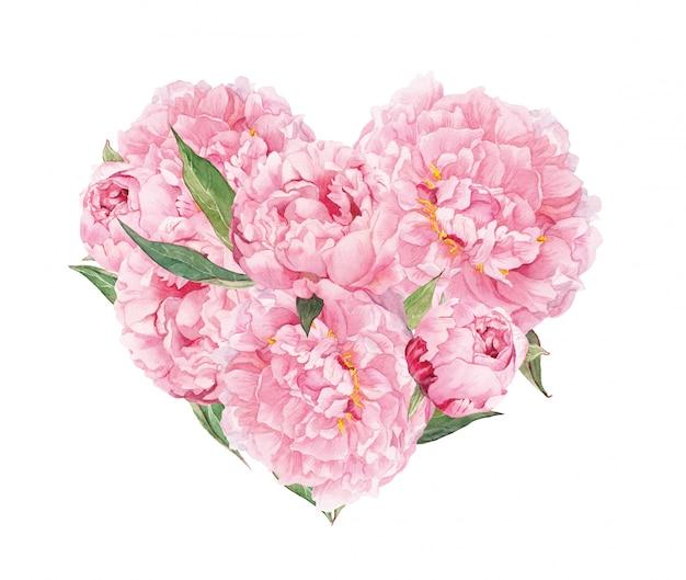 Kwiatowe serce z różowymi kwiatami peoni. akwarela na walentynki, wesele