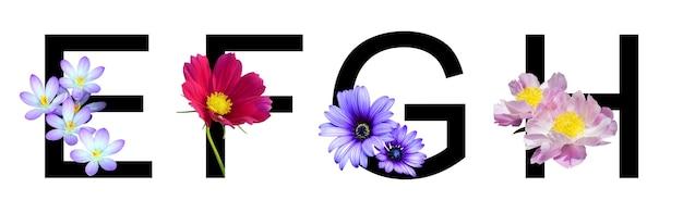Kwiatowy alfabet efgh wykonany z prawdziwych kwiatów do dekoracji w koncepcji wiosna lato