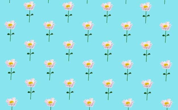 Kwiatowy minimalne tło. kwiaty na kolorowym tle. kreatywne minimalne tło