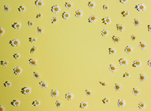 Kwiatowy rama wzór białych kwiatów rumianku stokrotka na żółtym tle. leżał płasko, widok z góry. lato w tle. długie cienie