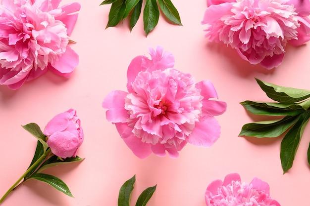 Kwiatowy wzór różowych kwiatów piwonii na różowo. kartka z życzeniami na 8 marca lub dzień matki.