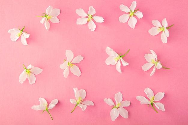 Kwiatowy wzór wykonany z jabłoni kwiaty na żółtym tle. kompozycja płasko świeckich kwiatów