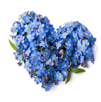 Kwiatuszki w kształcie serca, na białym tle.